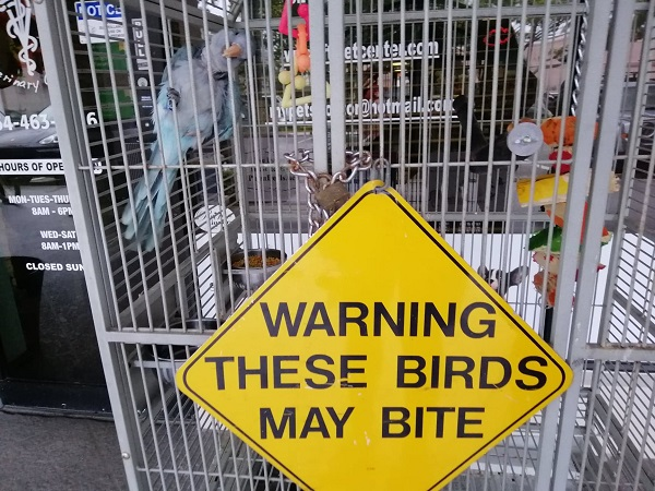 these birds may bite